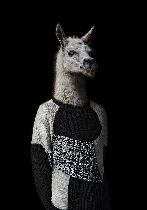 Larma – Portrait Number Eighty