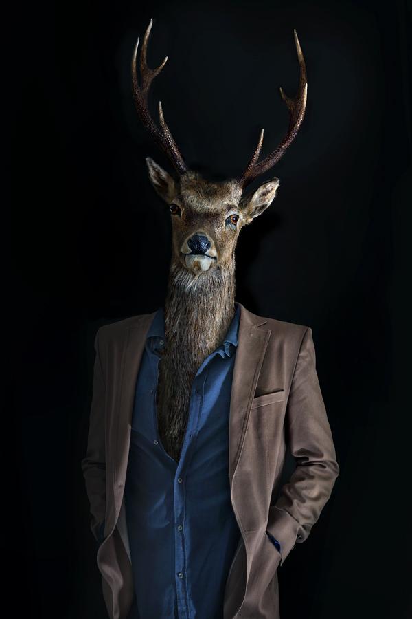 Miguel Vallinas, 'Roe Deer – Portrait Number Three', stampa fotografica opaca, 70 x 50 cm