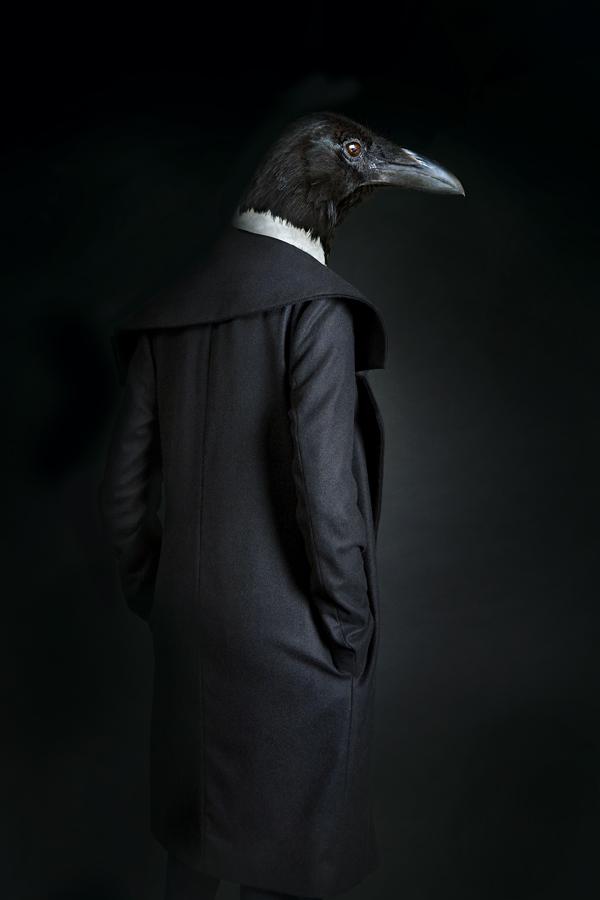 Bird 33